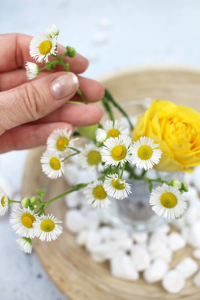 Noch ein paar Lieblingsblumen und schon ist die Tischdeko fertig