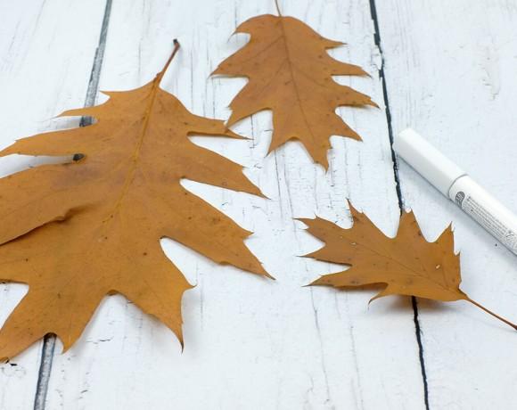 Bei soulsister meets freinds gibt es heute ein DIY mit Blättern von Gingered Things