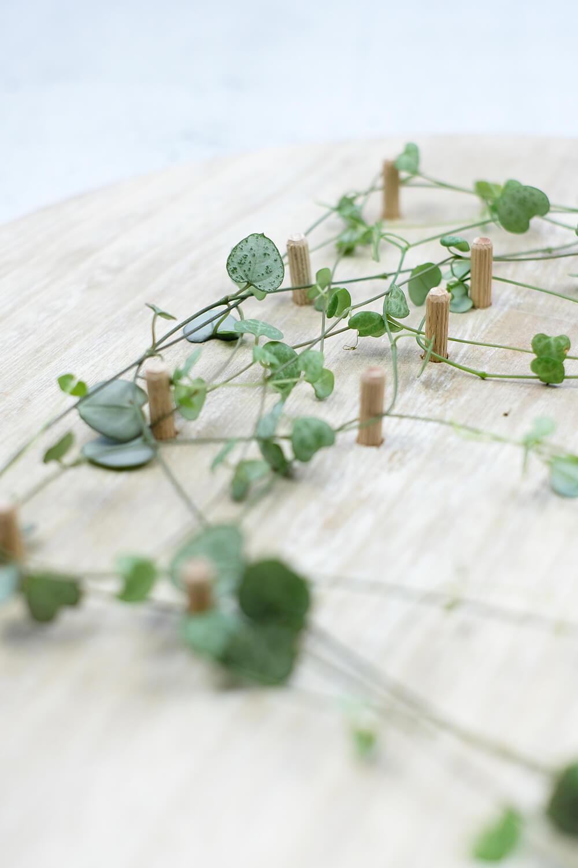 Diy Pflanzen Pegboard Lettering Valentinstag Deko Holz Schlingen