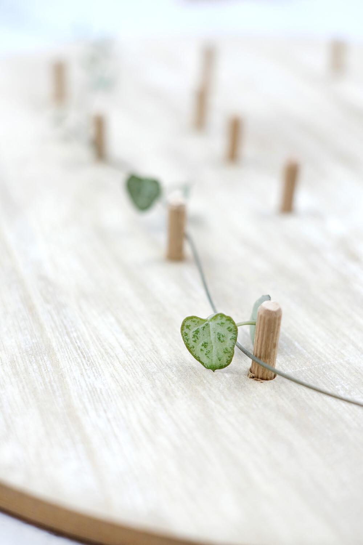 Vorsichtig die Pflanze um die Dübel legen. DIY Monogram auf Pflanzen und Holz als Geschenk für den Valentinstag, von Gingered Things