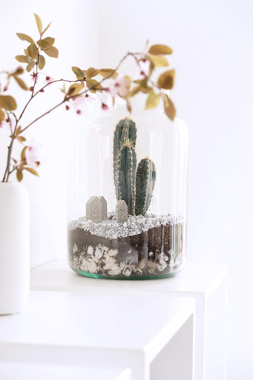DIY Kakteen Terrarium als Deko