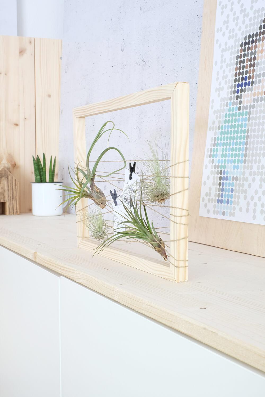 DIY Challenge - Vatertagsgeschenk mit Tillandsien im Holzrahmen - GIngered THings