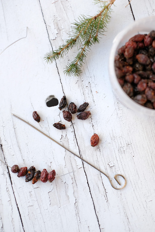 DIYnachten - Weihnachten für die Vögel im Garten mit dehner und Gingered Things